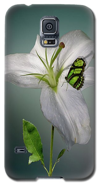 Galaxy S5 Case featuring the photograph 4371 by Peter Holme III