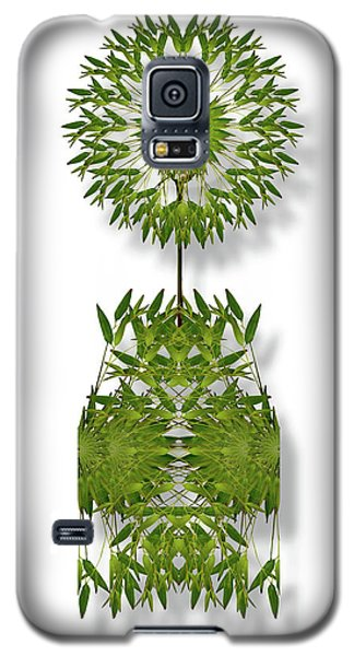 Galaxy S5 Case featuring the photograph 4393 by Peter Holme III
