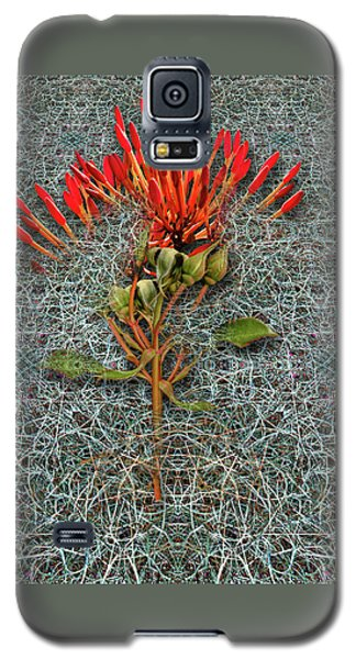 Galaxy S5 Case featuring the photograph 4400 by Peter Holme III