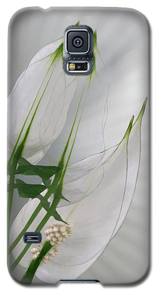 Galaxy S5 Case featuring the photograph 4425 by Peter Holme III