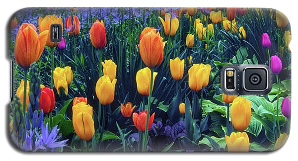 Procession Of Tulips Galaxy S5 Case