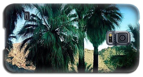 Famous Artist Galaxy S5 Case - 49 Palms Oasis. Have You Ever Been To by Alex Snay