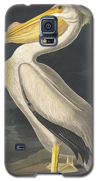 American White Pelican Galaxy S5 Case by Rob Dreyer