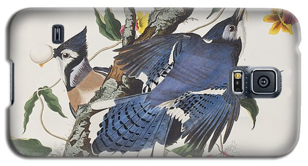 Bluejay Galaxy S5 Case - Blue Jay by John James Audubon
