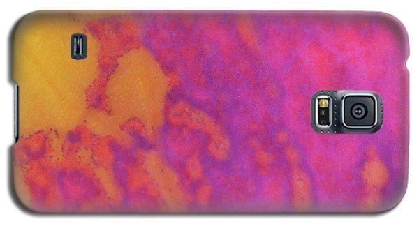 Color Transformation Of Rose Petal Galaxy S5 Case