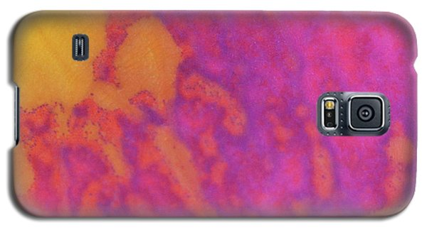 Color Transformation Of Rose Petal Galaxy S5 Case