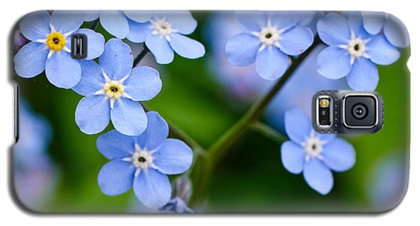 Forget Me Not Galaxy S5 Case