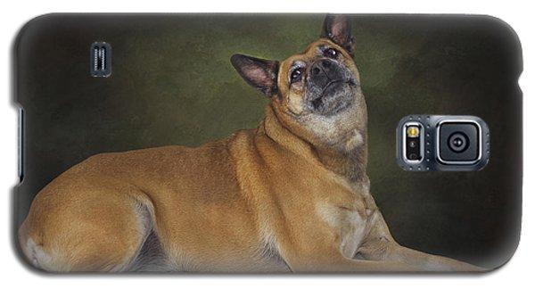 Mabel  Galaxy S5 Case