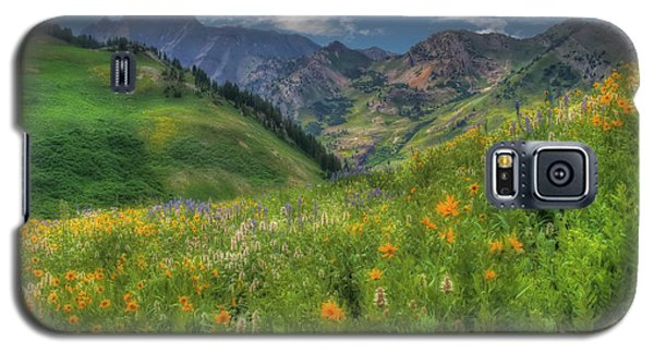 Albion Basin Wildflowers Galaxy S5 Case