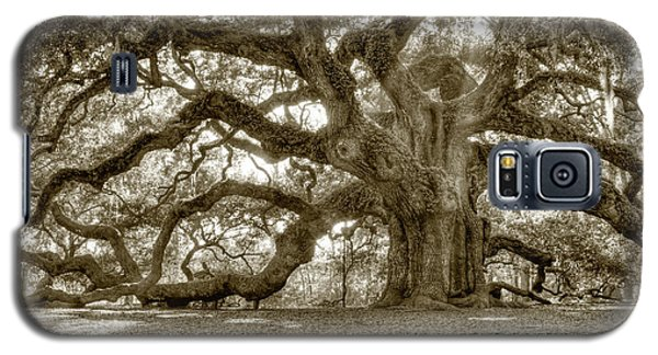 Angel Oak Live Oak Tree Galaxy S5 Case