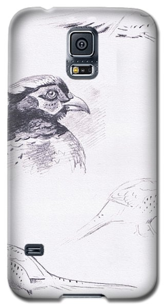 Pheasants Galaxy S5 Case by Archibald Thorburn
