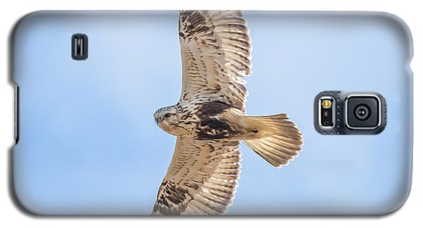 Rough-legged Hawk Galaxy S5 Case