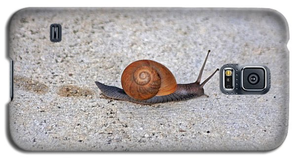 Galaxy S5 Case featuring the photograph 6- Snail by Joseph Keane