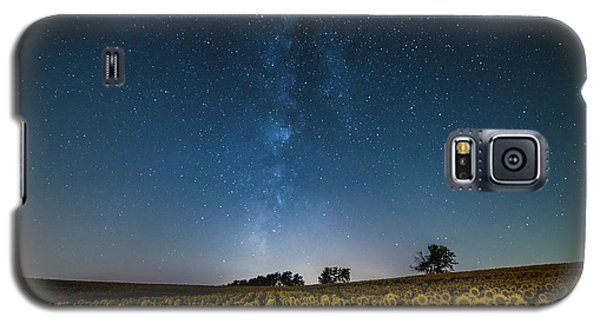 Sunflower Galaxy Galaxy S5 Case
