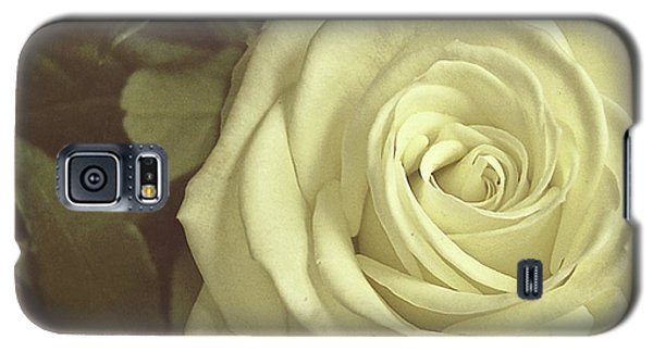 Timeless Rose Galaxy S5 Case