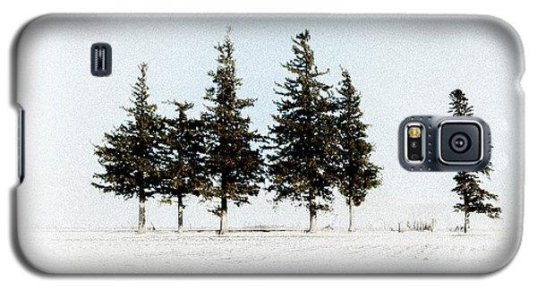 6 Trees Galaxy S5 Case