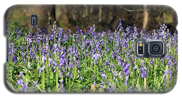 Bluebells At Banstead Wood Surrey Uk Galaxy S5 Case