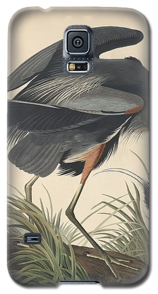 Great Blue Heron Galaxy S5 Case by Rob Dreyer