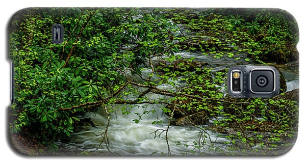 Galaxy S5 Case featuring the photograph Kens Creek Cranberry Wilderness by Thomas R Fletcher