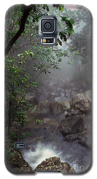 Misty Rainforest El Yunque Galaxy S5 Case