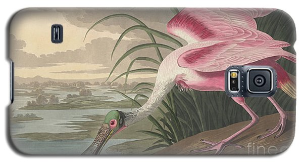Roseate Spoonbill Galaxy S5 Case by John James Audubon
