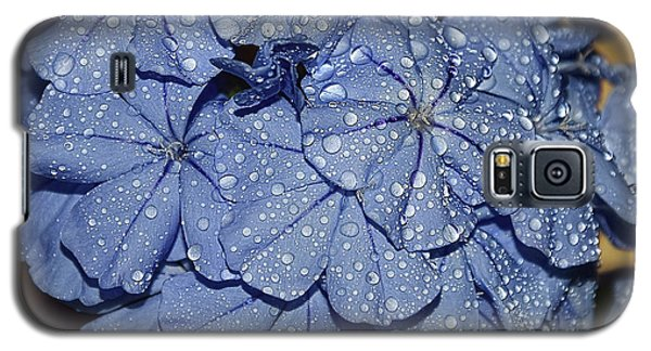 Blue Plumbago Galaxy S5 Case