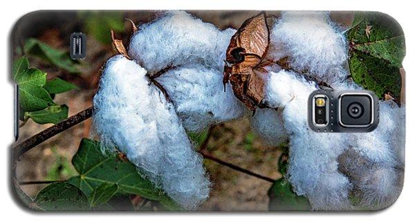 8 Bolls Of Cotton  Galaxy S5 Case