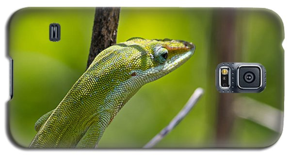 Green Lizard Galaxy S5 Case