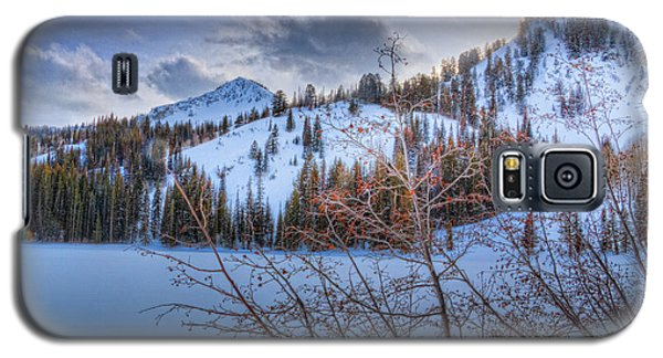 Wasatch Mountains In Winter Galaxy S5 Case