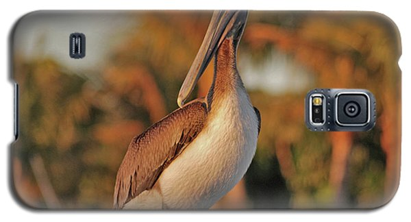 Galaxy S5 Case featuring the photograph 9- Brown Pelican by Joseph Keane