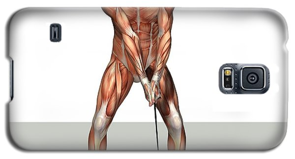 Male Muscles, Artwork Galaxy S5 Case by Friedrich Saurer