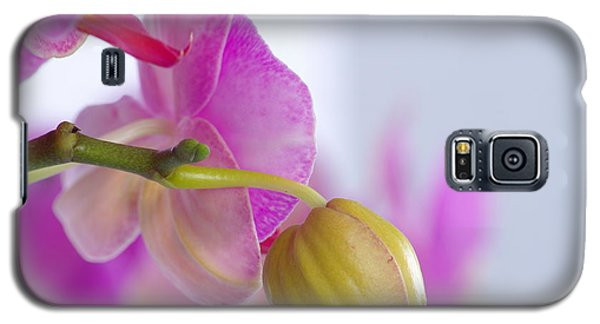 Galaxy S5 Case featuring the photograph Pink Orchid by Dariusz Gudowicz
