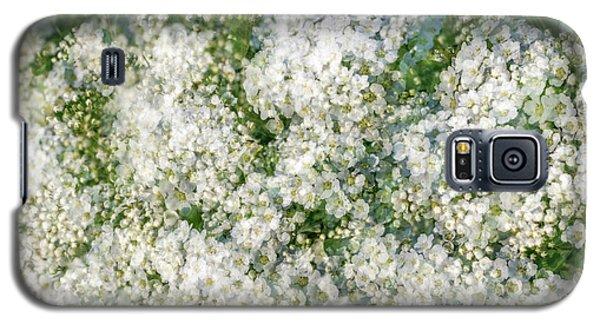 Spring Season - Inspired By Jackson Pollock Galaxy S5 Case