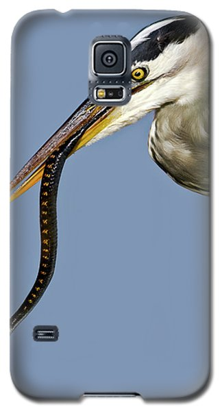 A Bad Snake Day Galaxy S5 Case
