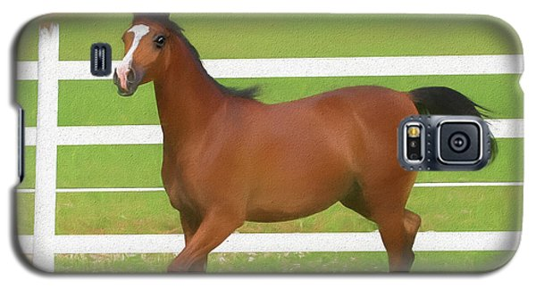A Beautiful Arabian Filly In The Pasture. Galaxy S5 Case