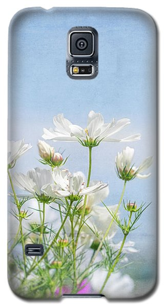 A Beautiful Summer Day Galaxy S5 Case