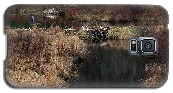 A Beaver's Work Galaxy S5 Case by Skip Willits