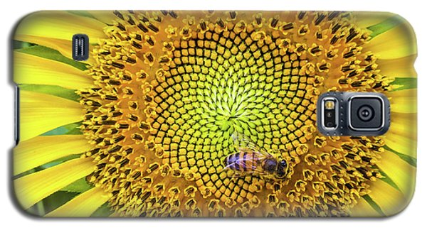 A Bee On A Sunflower Galaxy S5 Case