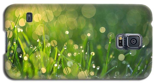 A Bit Of Green Galaxy S5 Case by Rachel Cohen