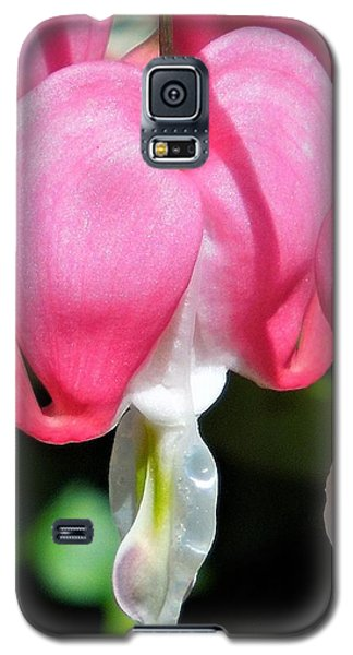 A Bleeding Heart Galaxy S5 Case
