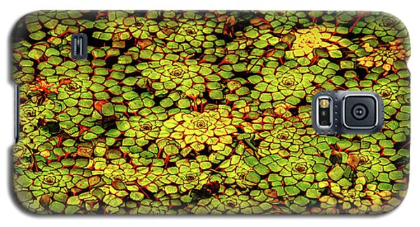 A Botanical Mosaic Galaxy S5 Case