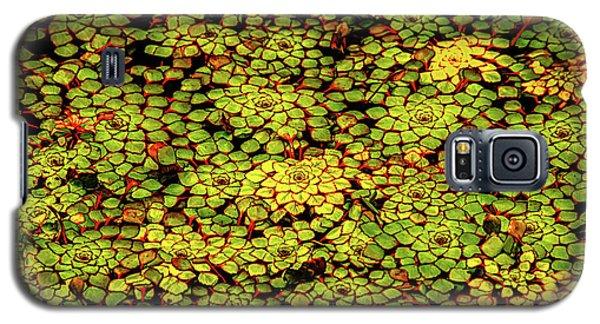 A Botanical Mosaic Galaxy S5 Case