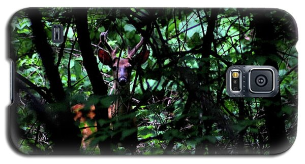 Galaxy S5 Case featuring the photograph A Buck Peers From The Woods by Bruce Patrick Smith