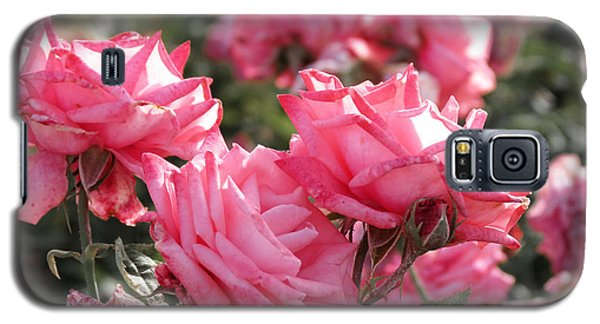 Galaxy S5 Case featuring the photograph A Bunch Of Pink by Laurel Powell