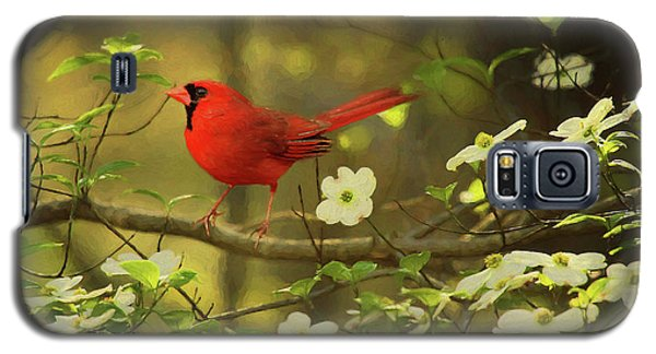 Galaxy S5 Case featuring the photograph A Cardinal And His Dogwood by Darren Fisher