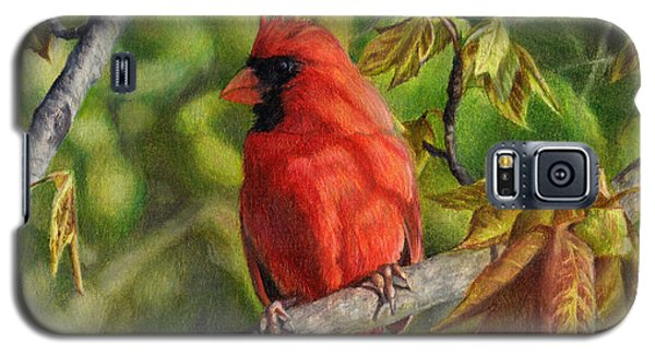 A Cardinal Named Carl Galaxy S5 Case