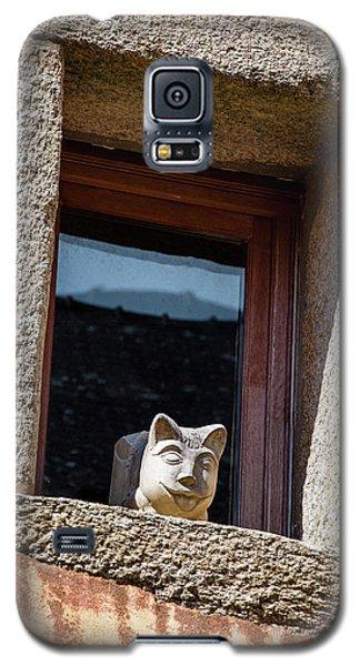 A Cat On Hot Bricks Galaxy S5 Case