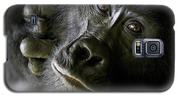 Gorilla Galaxy S5 Case - A Close Up Portrait Of A Mountain by Michael Poliza