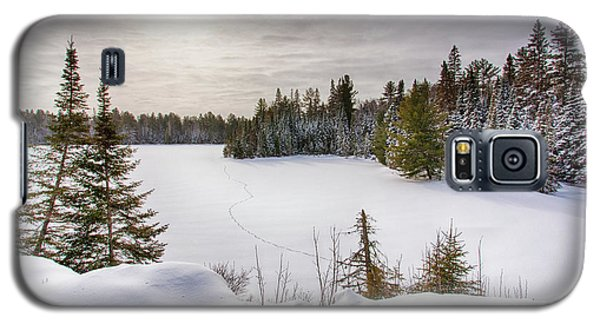 A Cold Algonquin Winters Days  Galaxy S5 Case