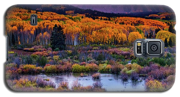 Galaxy S5 Case featuring the photograph A Colorado Fall Along Kebler Pass by John De Bord
